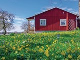 Holiday Home Gotland_148-S42541